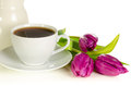 White cup of coffee with bunch of purple tulips on white backgro Royalty Free Stock Photo