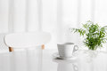 White cup on the kitchen table with green plant in background Royalty Free Stock Photos