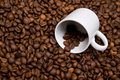 White cup over coffee bean made background Stock Photography