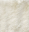 White curled sheep fur Stock Photography