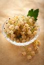 White currant in a crystal vase on a light brown background Royalty Free Stock Image