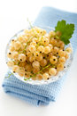 White currant currants in a crystal vase on a background Stock Images