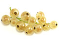 White currants Royalty Free Stock Photo