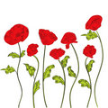 White decorative background with poppy Stock Photo