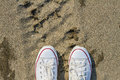 White dirty sneakers with a red stripe on a sandy summer background.