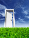 White door in grass with sky background Royalty Free Stock Photo