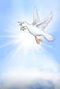 White dove of peace a hand drawn bird flies through the sky in front the sun and above clouds while carrying an olive branch Stock Images