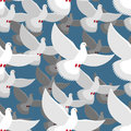 White Dove seamless pattern. flock of white doves in blue sky. T Royalty Free Stock Photo
