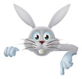 White easter bunny pointing down a rabbit at a banner or sign Royalty Free Stock Photo