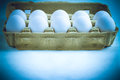 White eggs in a carton box. Royalty Free Stock Photo