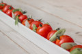 White elongated dish filled with cherry tomatoes and spring onio onions pepper Royalty Free Stock Images