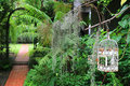 White empty bird cage in a tropical garden with bricks paved walkway Royalty Free Stock Photo