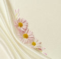 White fabric with folds and asters Royalty Free Stock Photo