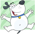 White Fat Dog Cartoon Character Jumping Royalty Free Stock Photo