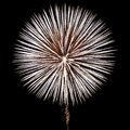 White Fireworks Royalty Free Stock Photo