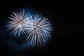 White fireworks with copyspace on a dark night background space for copy Royalty Free Stock Photo