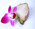 White fish and flower Stock Images