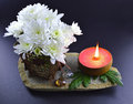 White flower with candle still life of pink and flowers on black background Royalty Free Stock Images
