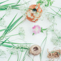 White flowers in a clay pitcher, flower cornflower, a rope and decorative grass of the falaris on a table Royalty Free Stock Photo