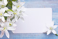 White flowers greeting card and a bouquet of lilies Stock Image