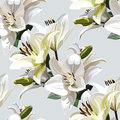 White Flowers of Lily, Madonna Lily. Seamless floral pattern on light background.