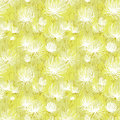 White flowers pattern Royalty Free Stock Photography