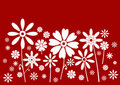White flowers red banner Royalty Free Stock Photography