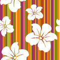 White flowers on a striped background seamless pattern with colorful Stock Photos