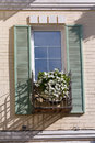 White flowers on the window in a classic style Royalty Free Stock Photo