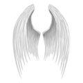 White folded angel wings isolated on background Stock Photo