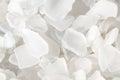 White Fragments of Beach Glass Royalty Free Stock Photo