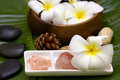 White frangipani with salt soap and zen stone Royalty Free Stock Photos