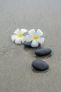 White frangipani and zen stone on the sandy beach Stock Photo