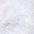 White fur texture Royalty Free Stock Photo