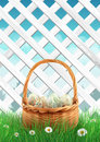White garden fence with Easter basket grass and flowers, spring background