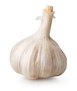 White garlic isolated on a background Stock Image