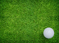 White golf ball on green grass of golf course Stock Images