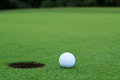 White golf ball on putting green sitting next to the hole with tree line in the distance background Stock Photography