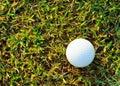 White golfball Royalty Free Stock Photo