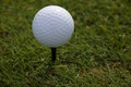 White Golfball on a Tee Royalty Free Stock Photo