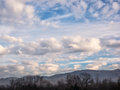 White and gray clouds in a blue sky with foreground multiple types of deep trees mountains the low Stock Images