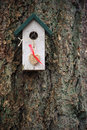 White and green birdhouse with hanging heart made from seeds Royalty Free Stock Photo