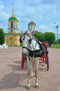 White horse with the carriage at Church of the All-Merciful Saviour in Kuskovo estate in Moscow Royalty Free Stock Photo