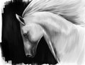 White horse digital art imitation of oil painting running against black background Stock Photo