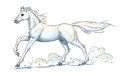 White Horse Gallop Stock Photos