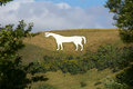 White Horse Westbury Royalty Free Stock Photo
