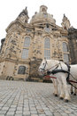 White horses in front of Frauenkirche, Dresden, G Stock Photography