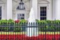 White House Door Red Flowers Pennsylvania Ave Washington DC Royalty Free Stock Photo