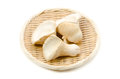 White king oyster mushroom Stock Photo