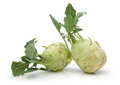 White kohlrabi Royalty Free Stock Photo
